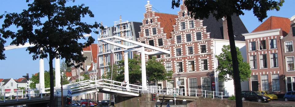 Een stadsgezicht van Haarlem en een brug